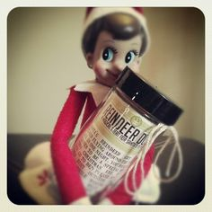 Elf on the Shelf - DIY Reindeer Dust for your elf on a shelf guy.  Cute idea for the little ones.