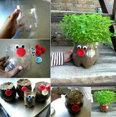 Recycled plastic bottles planters
