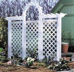 Classic wall trellis with arch