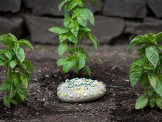 Transform an ordinary rock into a colorful work of art that accents a garden bed. - there's a video too http://www.hgtv.com/creating-decorative-garden-stones/video/index.html