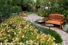 Path 2 California native plant garden