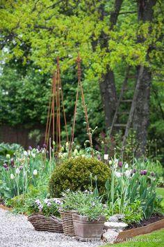 gardenlandscap design, le jardin, outdoor landscap, img8133jpg 600900, jardin 13