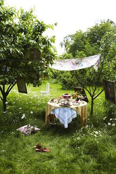 Gathering (great idea by the fruit trees in our backyard)