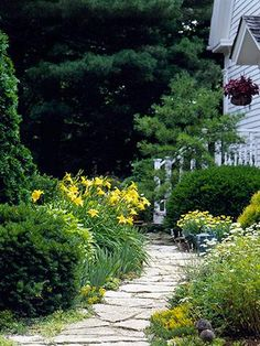 Secrets to Landscape Success... Throw some curves...  Curves, angles and free-form, flowing edges add interest to landscape design. Use curves -- such as paths, fences and edging -- to draw attention to a special place (such as a gazebo) or a special planting. At left, feverfew, 'Hyperion' daylilies and yellow Marguerite daisies line a curving path to the front door.