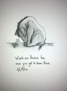 Weeds are flowers too, once you get to know them