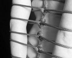 Web by Jenny Wallace, via Flickr