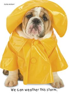 getting this for hanky