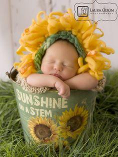 sunshine on a stem*