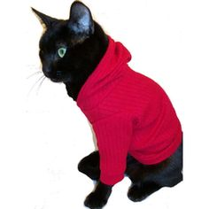 Knit Hoodie for Cats. THIS IS REAL. Dying.
