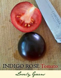 Indigo Rose Tomatoes - Black tomatoes with vibrant red flesh. Great flavor and holds well in cooked dishes! #tomatoes #gardening