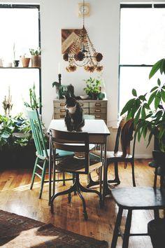 house plants ariele alasko by boots & pine