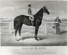Harry Bassett- 1871 Winner of Belmont Stakes