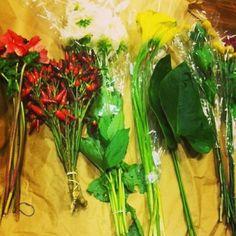 spring flowers, instagram, shoot decemb, rachaelraymag, set