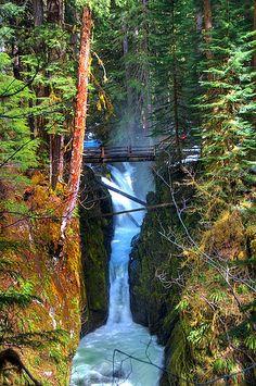 perfect park, nation park, northwest trip, shorts, national parks, beauti, travel, seattl washington, place