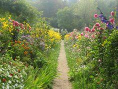 peaceful flower garden path