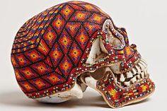 skull-lncc.jpg (300×200)