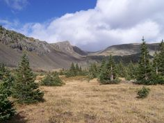 Elk hunting in the Colorado Rockies with my dad in 2009...this was one of the sights.