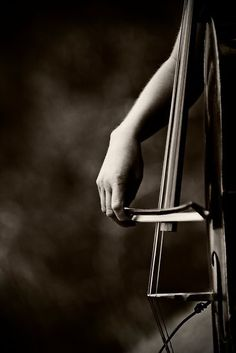 OO this cello is so pretty!