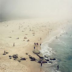 at the beach, bondi beach, beach haze