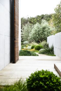 Huge timber clad door, freeform path and strong architectural elements