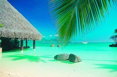Someday... Tahiti.