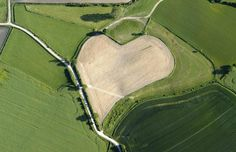 heart shapes in nature | Hearts in nature: naturally occurring and man-made heart shapes ...