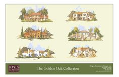 Disney's Golden Oaks - Which one should I pick???