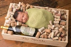 2014 Far Niente Baby boy - what a life he will have!