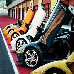 Lamborghini's :)