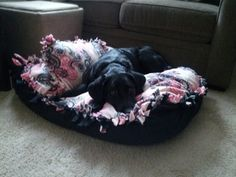 DIY Dog Bed Just like the tie blankets only you stuff it!   Easy and my dog loves it!