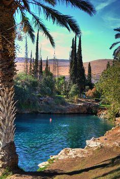 Thermal lake (Gan Hashlosha), Israel