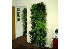 Bring life to your office or home with a vertical garden.  Clear the air AND your mind!  www.whitefence.com