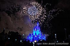 Walt Disney World - Wordless Wednesday with LINKY  - Los Gringos Locos