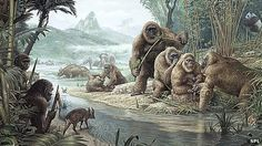 A UK-Swiss team will use DNA testing to investigate the origins of remains claimed to be from yeti and bigfoot.