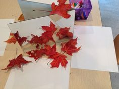 Drawing leaves and coloring on leaves :-)