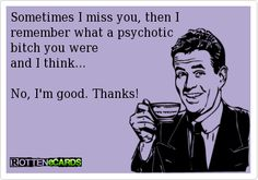 Sometimes+I+miss+you,+then+I+  remember+what+a+psychotic+  bitch+you+were+  and+I+think...    No,+I'm+good.+Thanks!