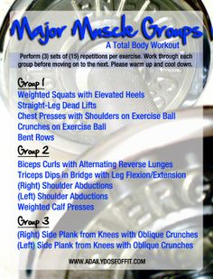 Major Muscle workout