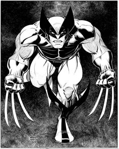 Wolverine by Arthur Adams