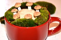 Fairy ring growing in my coffee cup....oh my!!! Mushrooms available at Morelandcreations.com fairi garden, mushroom idea, fairi furnitur, fairi ring, fairi tini
