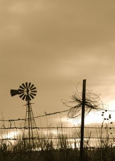 windmill pictures, churches, islands, barbed wire, fences, beauty, nebraska windmil, fields, country