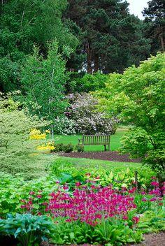 Ness Gardens, Cheshire, UK