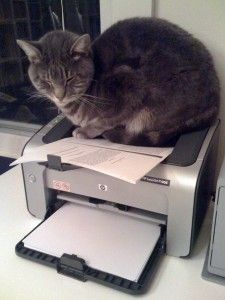 Computer Printers: Should You Leave The Printer On All The Time, Or Turn It Off?