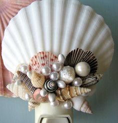 Seashell night light