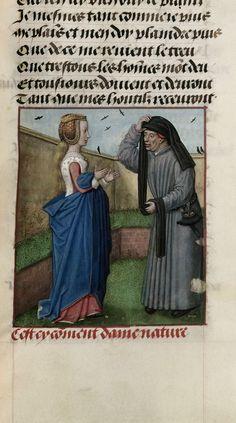 Nature=Guillaume de Lorris and Jean de Meun TitleRoman de la Rose OriginNetherlands, S. (Bruges) Datec. 1490-c. 1500 LanguageFrench