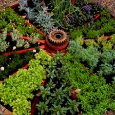 Such a cool herb garden or like to rebuild my circular garden in TN with brick walkways and birdbath in center instead of wagon wheel