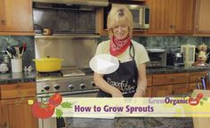 How to Grow Sprouts at www.GrowOrganic.com