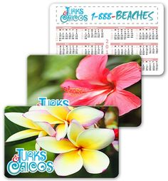 Lenticular calendar card with tropical Hawaiian flowers, Hibiscus and Plumeria, flip from Lantor, Ltd. Lenticular Card Printing: This 2.125 x 3.375 inch calendar card CA01-258 makes a great tropical flower-themed promotional product. The calendar card's face features a flip effect between two different images of tropical flowers, Hibiscus and Plumeria. This product creates impact for your message. See more at: http://www.lenticularpromo.com/Calendar-Card-p/ca01-258.htm#sthash.X0AxCLHU.dpuf