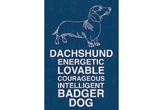 Dachshund dogs, dog sign, thing pet, a frame, dachshunds, badger dog, wood frame, print, dachshund fun