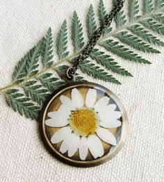 Daisy Pressed Flower Necklace
