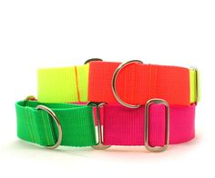"""1.5"""" dog collar The Cullen wide buckle or martingale collar"""